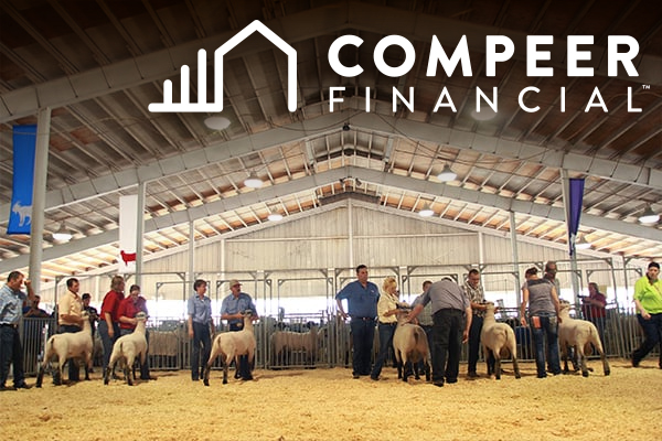 Open Livestock Exhibitor Spotlight presented by Compeer Financial