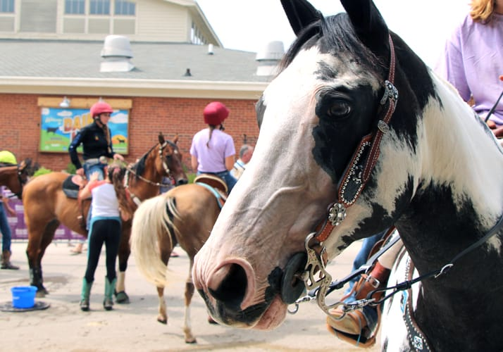 Upcoming Events – Wisconsin State Fair Park